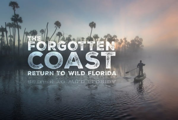 Florida Wild: The Forgotten Coast